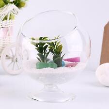 Home Deco Hydroponic Aquarium Fish Glass Vase Tank Plant Container Terrarium BG