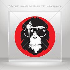 Decals Decal Monkey Mafia cigar sunglasses Helmet Atv Bike Garage st7 26522