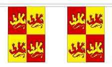 Owain Glyndwr Flag Bunting - 3m 6m 9m Metre Length 10 20 30 Flags -Polyester