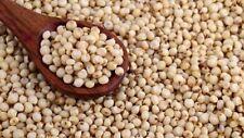 Juar Jowar Whole Sorghum Indian Cholam Healthy Grain