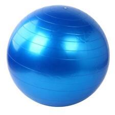 Home Exercise Workout Fitness Gym Yoga Ball
