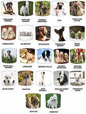 CUCCIOLO di cane Designs Paralumi Ideale Da Abbinare cuscini per cani & cani Adesivi Decalcomanie