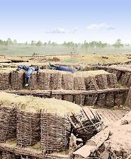 Fortifications Gabions Sedgwick Petersburg VA Color Tinted photo Civil War 02570