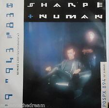 "SHARPE & NUMAN ~ No More Lies ~ 12"" Single PS"