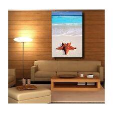 Tableaux toile déco rectangle verticale étoile de mer 5511393