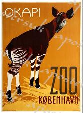 Vintage Copenhagen Zoo Okapi Poster A3/A4 Print