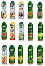 Teisseire Sirup 600 ml und 750 ml Fruchtsirup verschiedene Sorten Sirop