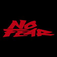 No Fear Logo Text Car Truck Window Wall Laptop Gift Vinyl Decal Sticker.
