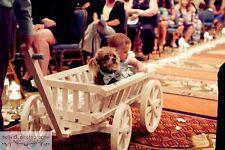 Unfinished Flower Girl Pumpkin Wagon- Medium size, Child's Wedding Wagon
