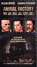 Animal Factory [VHS], Good VHS, Harden Jr., Ernest, Furlong, Edw,