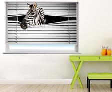 Zebra mirar a través de la ventana impresa Foto ciego ciegos Animal Foto ciego