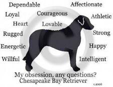 Chesapeake Bay Retriever Dog My Obsession,Questions? T-shirt ,LS, or Sweatshirt