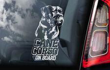 Cane Corso on Board - Car Window Sticker - Dog Sign Decal Italian Mastiff - V06