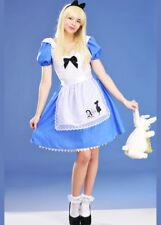 Womens Long Alice In Wonderland Costume