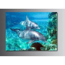 Tableaux toile déco rectangle dauphin 20471