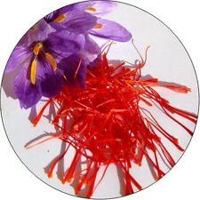Saffron – Zafran – Kesar