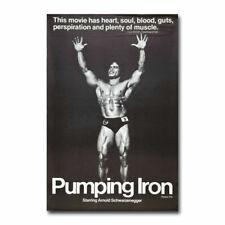 T-358 Bodybuilding Female Fitness Motivational Art Poster Silk 30 24x36