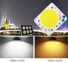 30W 40W 50W Driverless LED COB Chip AC 110V 220V Floodlight Integrated Smart IC