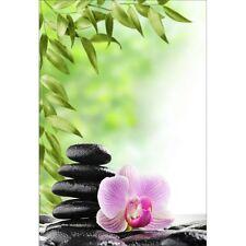 Stickers muraux déco : galets orchidée 1303