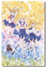 194108 Sailor Moon Tuxedo Mask Japan Anime Boy Room Wall Print Poster CA