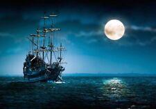 meSleep Pirate Ship Wall Poster - Paper Print-175 GSM Poster