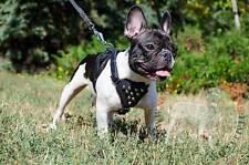 Comoda pettorina per cane piccolo, in pelle naturale, taglia unica regolabile