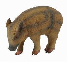 CollectA 88366 Wild Piglet Eating Wildlife Hog Pig Forest Animal Figurine
