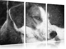 Jack Russel Terrier Descansa Sich Aus 3-Teiler Foto en Lienzo Decoración de