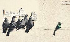 Banksy Framed Canvas Street  graffiti Urban  Art Print pigeons stencil
