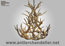 REAL ANTLER ROYAL CROWN CHANDELIER 8 LIGHT MULE DEER , RUSTIC LAMPS, MD ACS LGT