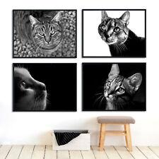 Cat Pet Black White Art Photo Print Canvas Poster Vintage Decor No Frame A181