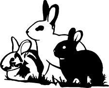 Rabbit Bunny Hare Jackrabbit Car Truck Window Laptop Vinyl Decal Sticker