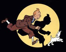 """Imán """"Tintin"""". Diferentes Medidas, desde 2€"""