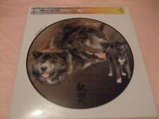1 autocollant - motif chien  AKITA INU BRINGE