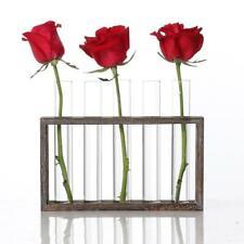 Test Tube Flower Bud Vase Planter Terrariumin for Office Home Decor