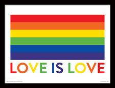 El amor es amor pre-montado con Marcos y enmarcado impresión Bandera Arco Iris Orgullo Gay Lgbt Arte