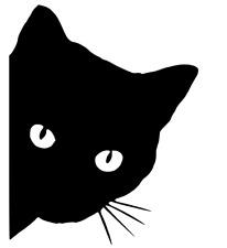 PEEPING chaton, cat, Voiture, Van, Camion, camping-car, moto, Decal, Autocollant.