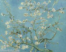 TIME4BILD VINCENT VAN GOGH Mandelblüten Almond tree BLUMEN BILD LEINWAND GICLEE