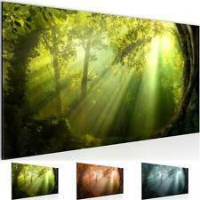 WANDBILDER Wald Landschaft VLIES LEINWAND BILD - XXL BILDER KUNSTDRUCK 607112P