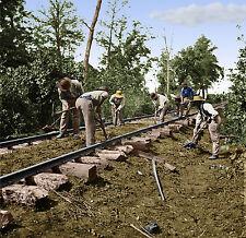 African Americans Repair Railroad Track TN Color Tinted photo Civil War 02135