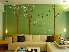 Huge Family Tree Birds Wall Sticker Vinyl Art Home Decals Room Decor UK  SH184