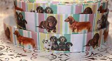 "7/8"" DACHSHUND HOT DOG WEINER DOG GROSGRAIN RIBBON BY YARD USA SELLER"