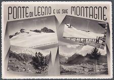 BRESCIA PONTE DI LEGNO 28 VEDUTINE - MONTAGNA Cartolina FOTOGRAFICA viagg. 1951