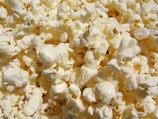 Popcorn Seed: Ladyfingers popcorn seed Fresh Seed  FREE Shipping