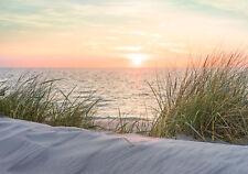 11597 -Strand Gras Sand Nordsee Ostsee Sonnenuntergang VLIES Fototapete-DÜNEN-