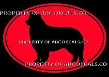 VRS Oval Dog Border Collie Herding Puppy Rescue Kennel CAR DECAL VINYL STICKER
