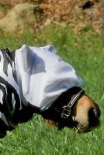 Fliegenhaube weiß Minishetty Shetty mit oder Ohne Ohren Fliegenmaske Mini Shetty