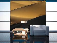 3D Zwei Farben der Wüste 7755 Fototapeten Wandbild Fototapete BildTapete Familie