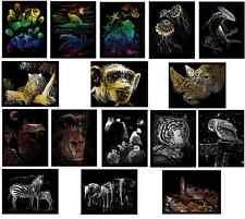 Scelta di 16 animali selvatici Designs A4 Incisione Arte Raschietto Craft FOIL KIT & Tool