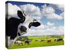 FUNNY MUCCA rurale di tela Wall Art Print Picture-Tutte le taglie disponibili